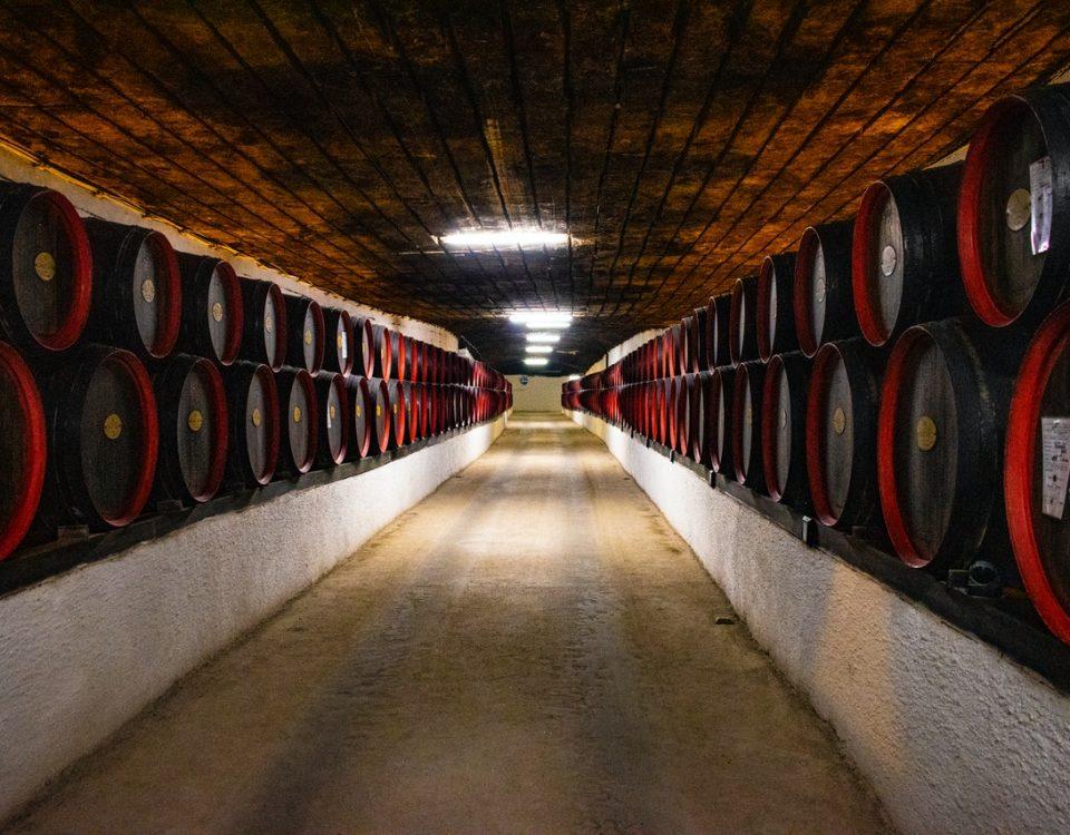 Miti da sfatare sul vino: come abbinare il vino al cibo e imparare a bere bene